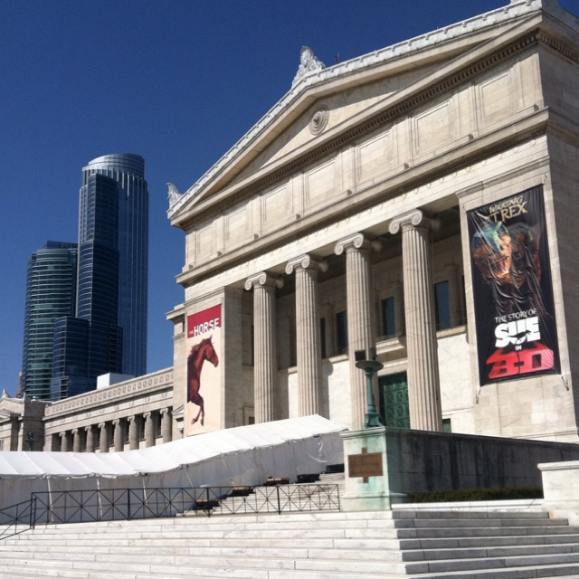 The Curse Of King Tuts Tomb Torrent: 30 Best Chicago Field Museum Images On Pinterest