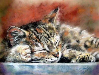 Pastel Paintings by Paul Knight. Cats