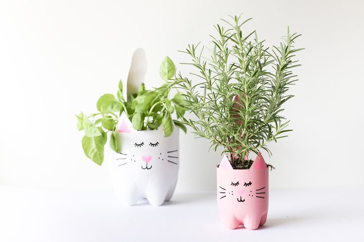Turn an empty soda bottle into an adorable kitty plant planter for catnip, herbs, or even a cactus or succulent! Easy to make and so cute! // Salty Canary