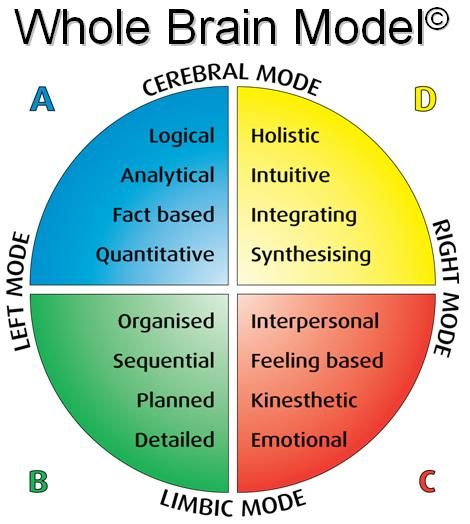 INSTRUCTIONAL DESIGN Learning Theories | Herrmann's Brain Dominance Index (HBDI) www.hbdi.com | Whole Brain Thinking | Accelerated Learning | CPLP