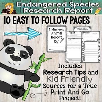The 25+ best Animal research for kids ideas on Pinterest Animal - animal report template example