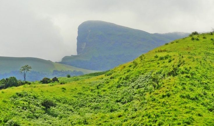 Trek to Kudremukh >>>  Kudremukh is the highest peak in the Kudremukh National Park, Karnataka which is the second largest Wildlife Protected Area in western Ghats. #Kudremukh peak is the 3rd highest peak in the #Chikmanglur district with the elevation of 6,214 ft.  # Kudremukh #Treks #Trekking #Karnataka