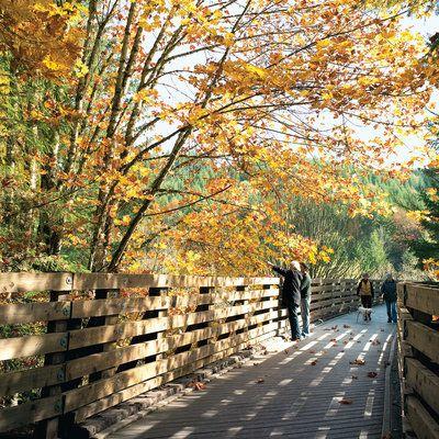 Banks-Vernonia State Trail