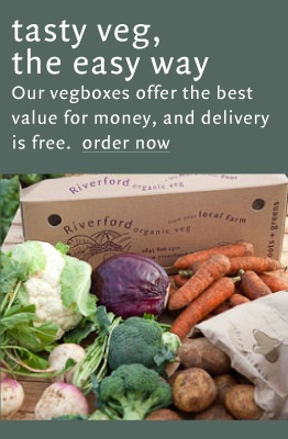 Riverford Organic Vegetable boxes - making it easy to eat your five portions a day.  From £12.45 including delivery for a mini fruit & veg box (5 easy eating veg and 2 fruit varieties is enough for 2 people).  they also provide recipe ideas to help you make the most of your seasonal veg.