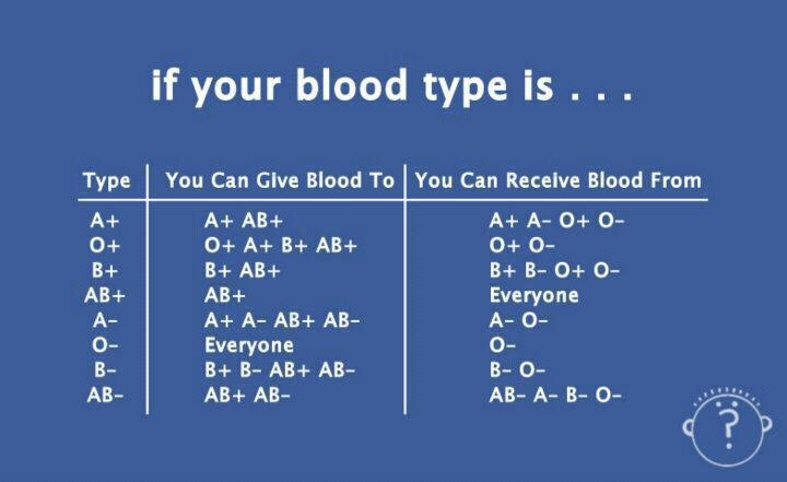 Whats Your Blood Type?? Mine Is O Very Rare  Health. Social Security In Phoenix Td Banking Online. Google Docs Project Management. Computer Maintenance Software. Credit Card Debt Solutions Reviews. Best Invoicing Software Customer Loyalty Card. Successful Marketing Strategies. Margin Calculation Formula Get Business Loan. Environmental Health Courses