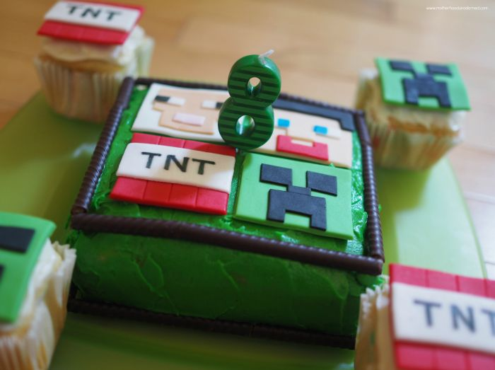 Happy 8th Birthday Ronin! {Minecraft Party Ideas}