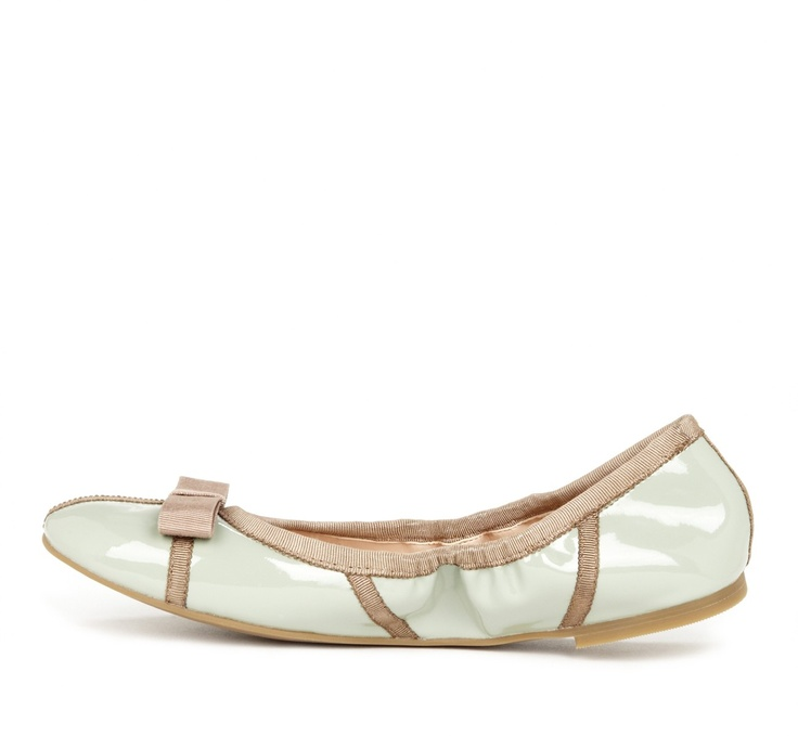 Mint flats for spring