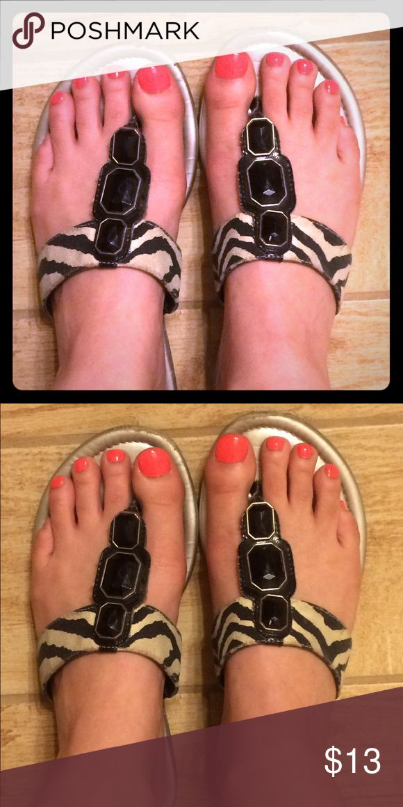 Zebra, black and white flip flops. Size 8 Zebra/black and white flip flops. Size 8. EUC Dana Buchman Shoes Sandals