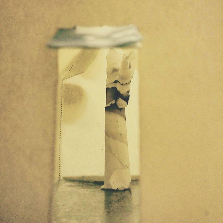 #contemporaryart #contemporaryartists #paperart #paper #tree #inside