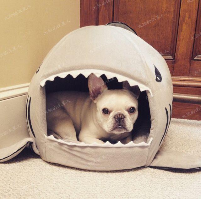 Vorm van shark kat huis hond bedden/matten warm huis winter hond om huis puppy hond bed huisdier bed mat huisdier nest chihuahua PH31