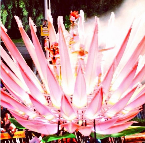 A beautiful flowering lotus float at the Cape Town Carnival last weekend --> http://www.news24.com/Travel/South-Africa/5-Floats-that-made-the-Cape-Town-Carnival-2014-awesome-20140317