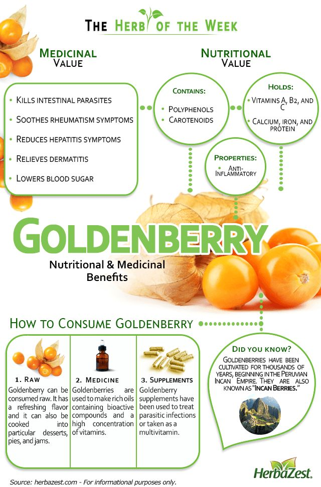 HerbaZest - Everything you need to know about Goldenberry in one single infographic! Click on the image for more information. Tags: #HerbaZest #Goldenberry #Nutrition #Health