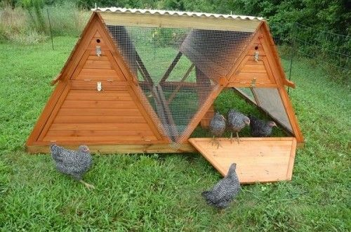 When you only have a small flock of chickens, a big coop is not needed. Neither is spending a lot of