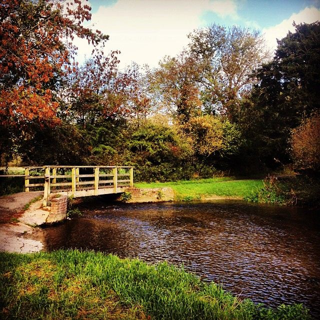 Over The Garden Walk: Bridge Over The River, Near The Church At Charminster