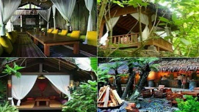 Informasi Wisata Kampung Daun mengenai kondisi tempat wisata