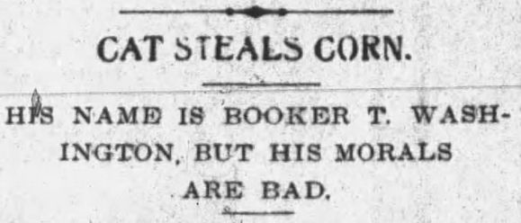 Sometimes a Good Name is not enough to reform a Bad Cat. Wilkes-Barre Semi-Weekly Record, Pennsylvania, August 18, 1905