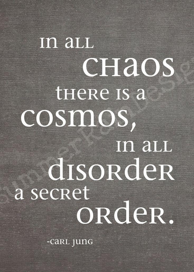 """""""Em todo o CAOS existe um COSMO, em toda a DESORDEM uma secreta ORDEM"""". Carl Jung"""