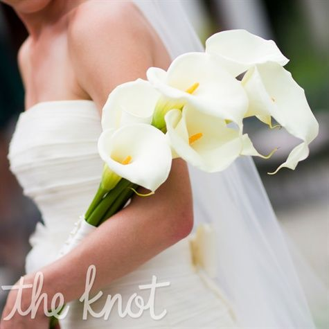 not my pick for a wedding, but gorgeous flowers nonetheless. long-stemmed ivory calla lilies-- via theknot.com