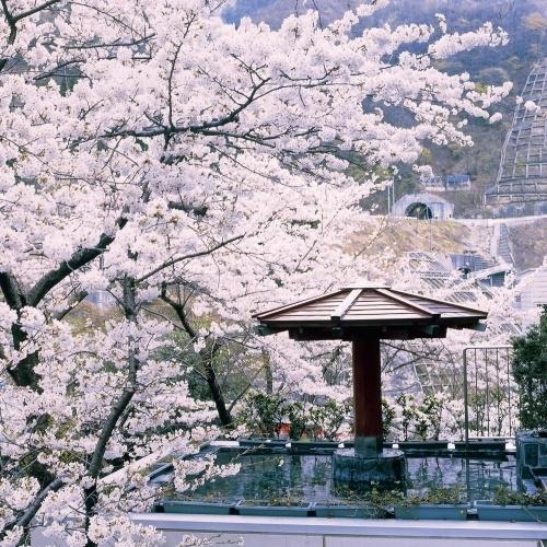 黒部峡谷・宇奈月温泉 ホテル黒部 【富山県】