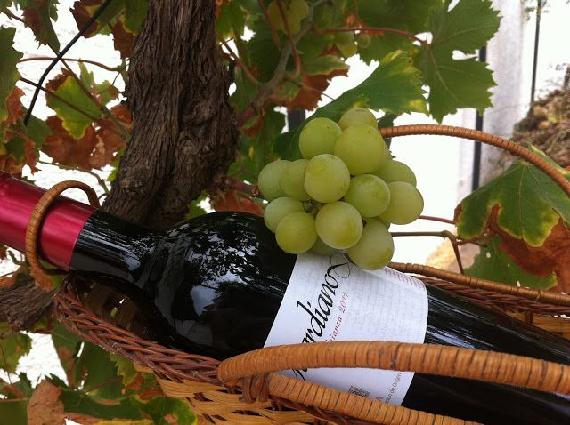 #vinos #Guardiano #Crianza #Rioja #gastronomía #recetas #Conejoalajillo #Torneado y #perseverante