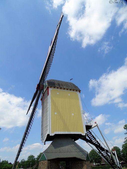 "Photo ""windmillHolland"" by ellydiestelhofsigon"