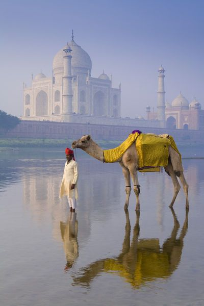 TTM054: The Taj Mahal, India || Planning your to visit Heritage India, The #TajMahal, #Agra – in your next vacation contact Team - www.VisitHeritageIndia.com