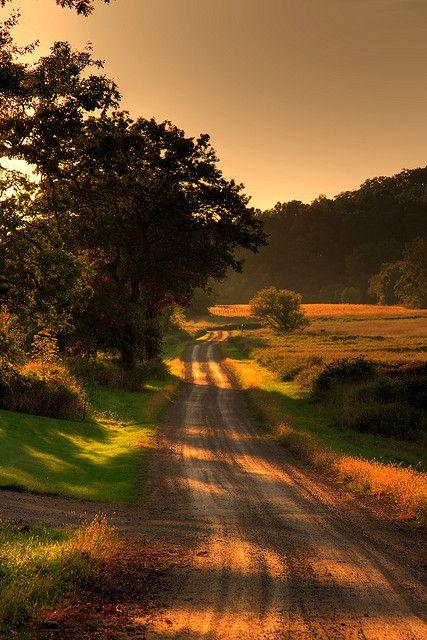 A winding, sun- dappled country lane at summer's dusk is an eternal pathway my dream heart followsl