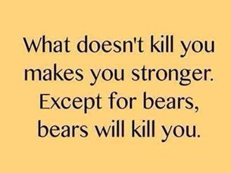 Photo: Except for bears... he he!