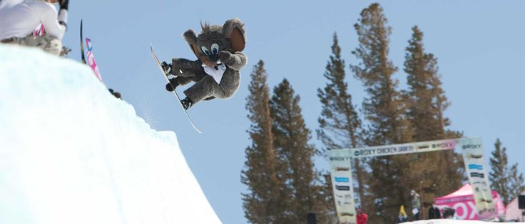 Top 7 Terrain Parks for Kids in Switzerland, Canada, France, USA and Austria