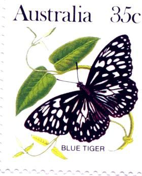 Australian Postage stamps of Australian Lepidoptera - Blue Tiger - SC:876 - 1983 $.35