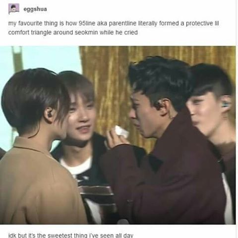 95-line = Parent-line this makes me want to cry BC seokmin is always happy