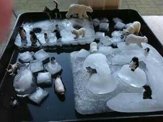 Idee voor de watertafel.. Tover het met ijsblokjes en pinguins om tot de Noordpool..