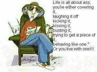 Life is all about ass by MaxineFunny Sayings, Old Lady, True Facts, Funny Pictures, Funny Stuff, Group Pictures, Pictures Quotes, True Stories, Cartoons Character