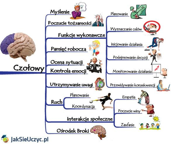 Kontrowersyjny temat dzisiejszego wpisu zawdzięczam badaniom przeprowadzonym przezDouga Bremnera opierającym się o badaniarezonansem magnetyczny PET – ukazując w ten sposób aktywność poszczególnych obszarów mózgu! Doug Bremner wykazał w swoich badaniach( skrót badań po ang.) szkodliwość leków opartych na izotretynoinach (curacne,roaccutane, … Czytaj dalej →