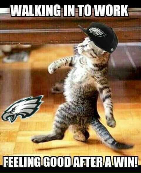 Cute #PhiladelphiaEagles #Meme