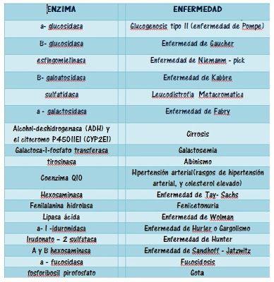 Promoción XXII Medicina Humana - UNJFSC: Enzimas, Estructura, Función, Tipos y Enfermedades