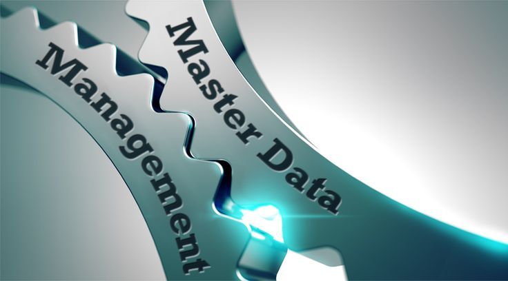 What is Master Data? How can Master Data Management help your organization achieve higher revenues, and greater efficiencies? Does your company need MDM? Read on to know more - http://www.vinculumgroup.com/all-about-master-data-management/