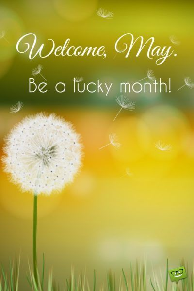 Welcome, May. Be a lucky month.