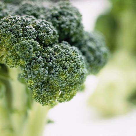 BROCCOLI - Eén van de krachtigste groenten waarvan bekend is dat ze ons bescherming kunnen geven tegen kanker. Broccoli versterkt het immuunsysteem, laat staar verminderen en houd de bloedvaten gezond en gaat ook nog eens aangeboren afwijkingen tegen. Broccoli herbergt enorm veel goede bio-voedingsstoffen, meer dan enig ander soort groente en heeft heel weinig calorieën, dus ook nog eens goed voor het afslanken. Het is een topgroente als het gaat om het gehalte aan polyfenolen.