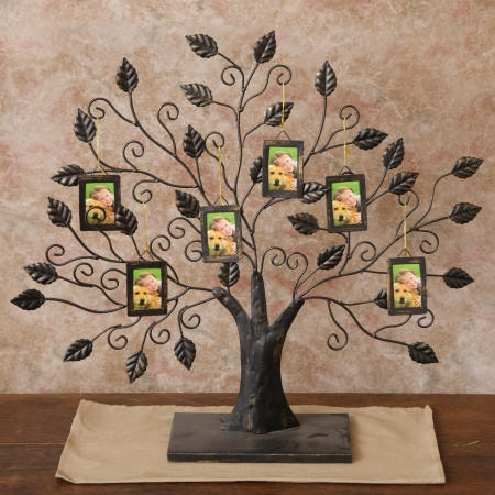 Family Tree Picture Frames Http Www Ebay Com Itm French