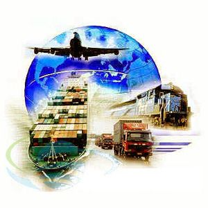 Talk about Logistics Management either Online or in Opole