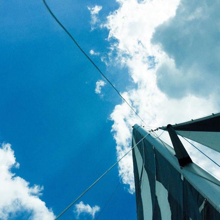 Sailing #sailing #sailboat #catamaran #lipno #sunnyday #sunny #clouds #boat #sailor