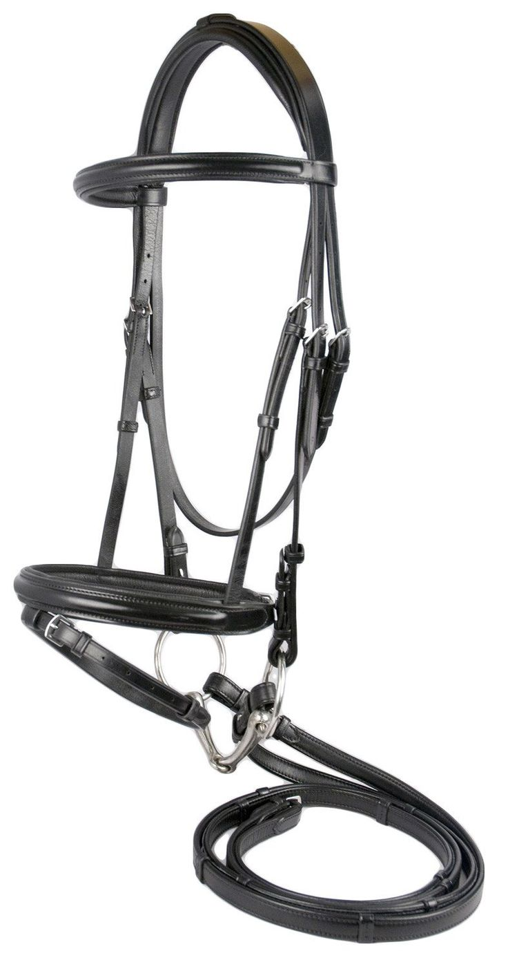 Raised Euro Dressage Bridle With Covered Reins