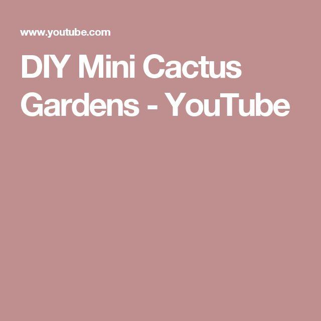 DIY Mini Cactus Gardens - YouTube