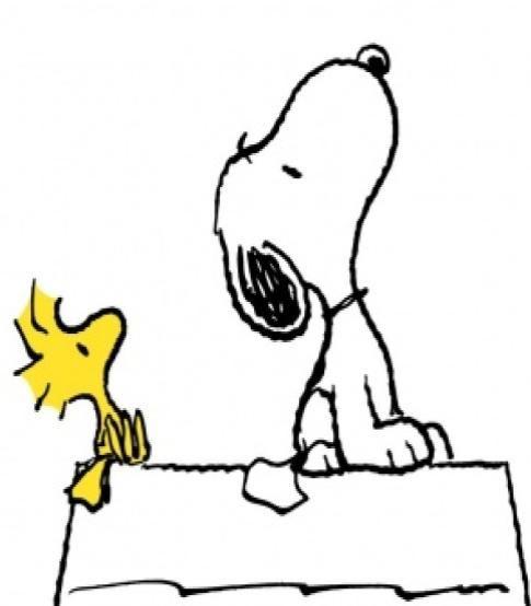peanuts woodstock - Google Search                                                                                                                                                                                 More