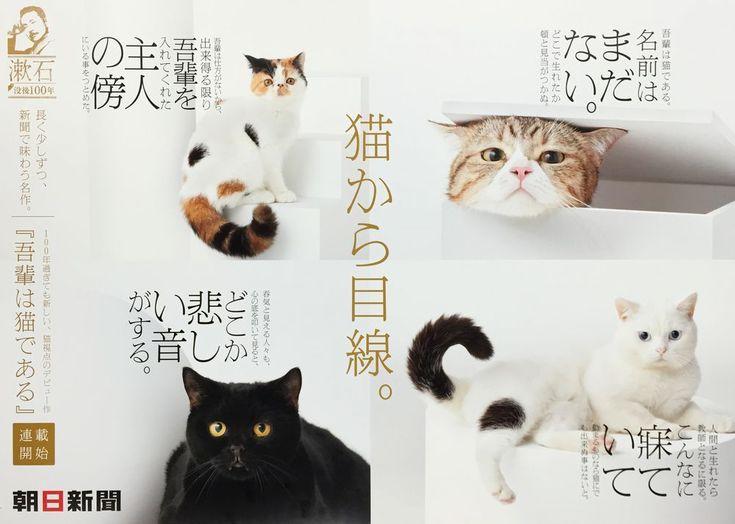 夏目漱石「吾輩は猫である」:朝日新聞デジタル