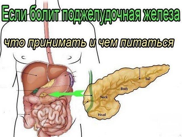 ✔ ПОЛЕЗНЫЕ СОВЕТЫ :  Сохраните, чтобы не потерять.  СОВЕТ 1 : ЛЕЧЕНИЕ ПОДЖЕЛУДОЧНОЙ ЖЕЛЕЗЫ НАРОДНЫМИ МЕТОДАМИ   То, чего не расскажет ни один врач! Поджелудочная железа — один из важных внутренних органов  человеческого тела, который отвечает за наше пищеварение. Сбой в работе поджелудочной чреват осложнениями и целым рядом заболеваний, таких как панкреатит или сахарный диабет. К счастью, есть прекрасные народные средства, которые помогают лечить этот орган не хуже лекарств. Если у тебя есть…