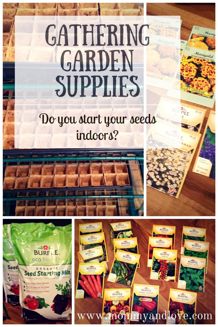 Gathering indoor greenhouse supplies: This is step one to start your seeds indoors in preparation for a successful summer harvest.