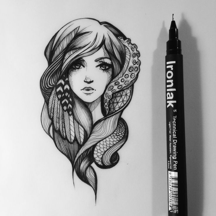 sarsar / illustrations by sarah mccloskey