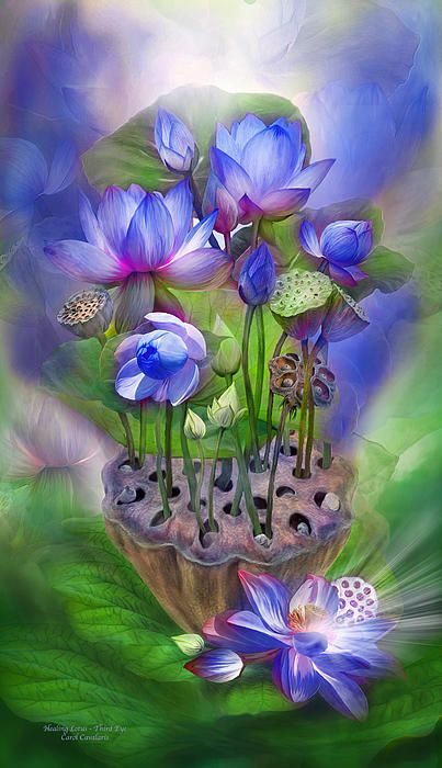 Third Eye Lotus spirit of the subconscious Chakra of higher wisdom teaching me how to see truth and life free of illusion. Your color indigo your element magical and mystical energies radiating awareness of my inner and outer world guiding me through my past, present and future with deep understanding and healing insight into myself and others.  Healing Lotus - Third Eye Chakra prose by Carol Cavalaris